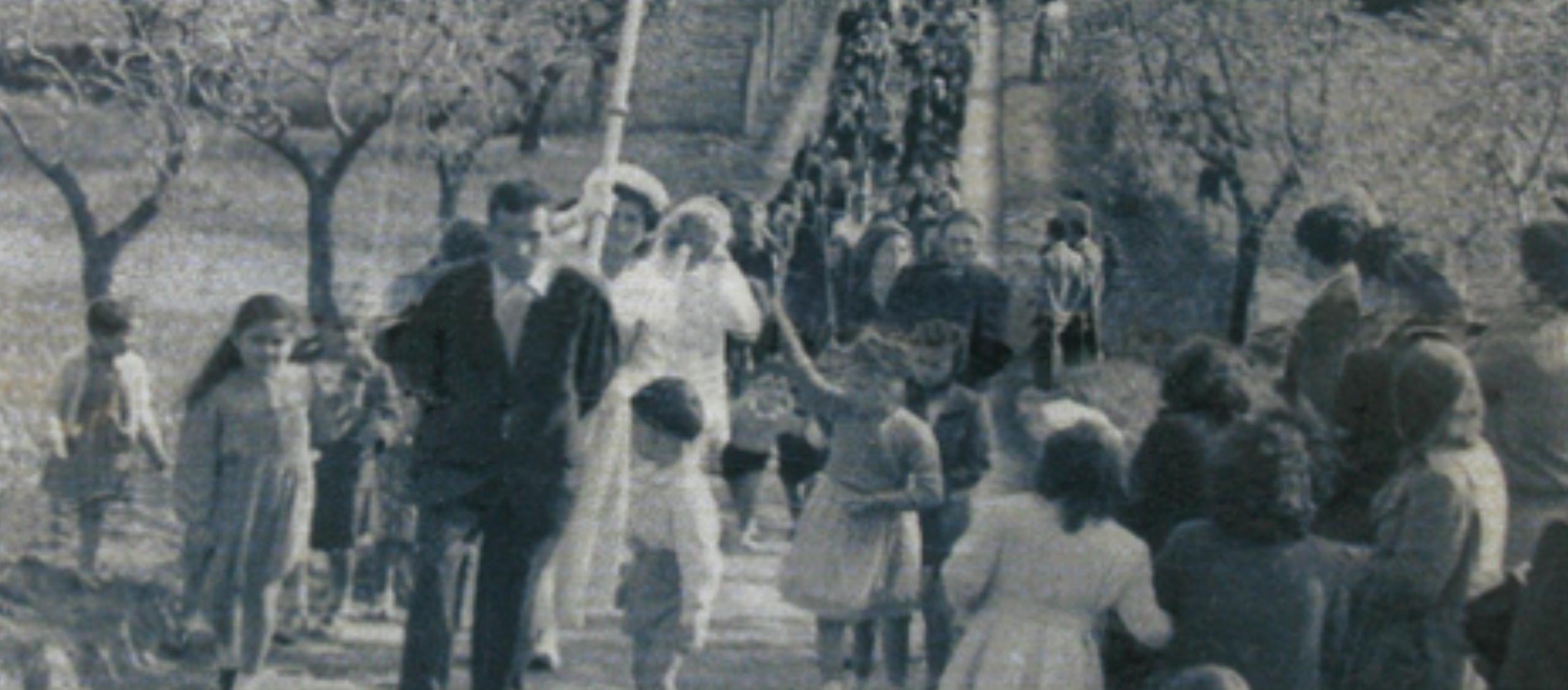 La Madonna delle Serre: storia di un dipinto e di una festa
